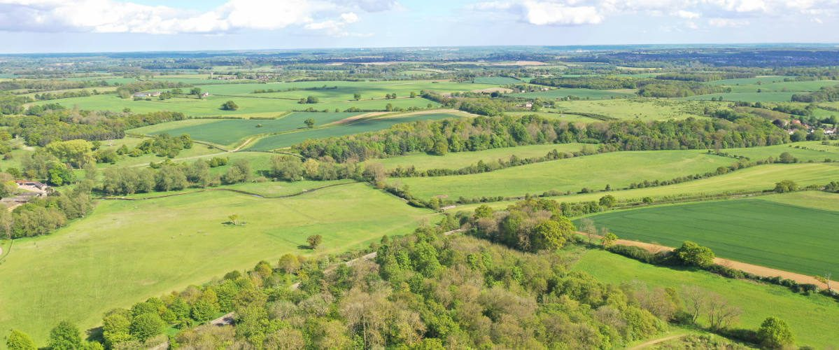 Woodhall Estate Parkland and fields in Hertfordshire