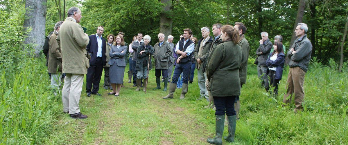 Private Tours group in woods near London