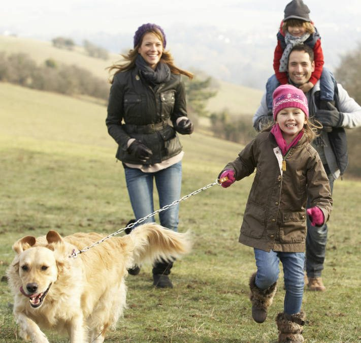 Family walking in countryside in rural Hertforshire
