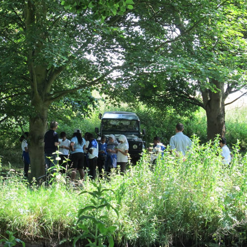 Community event in woodland at Woodhall Estate